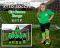U5 Green Frogs